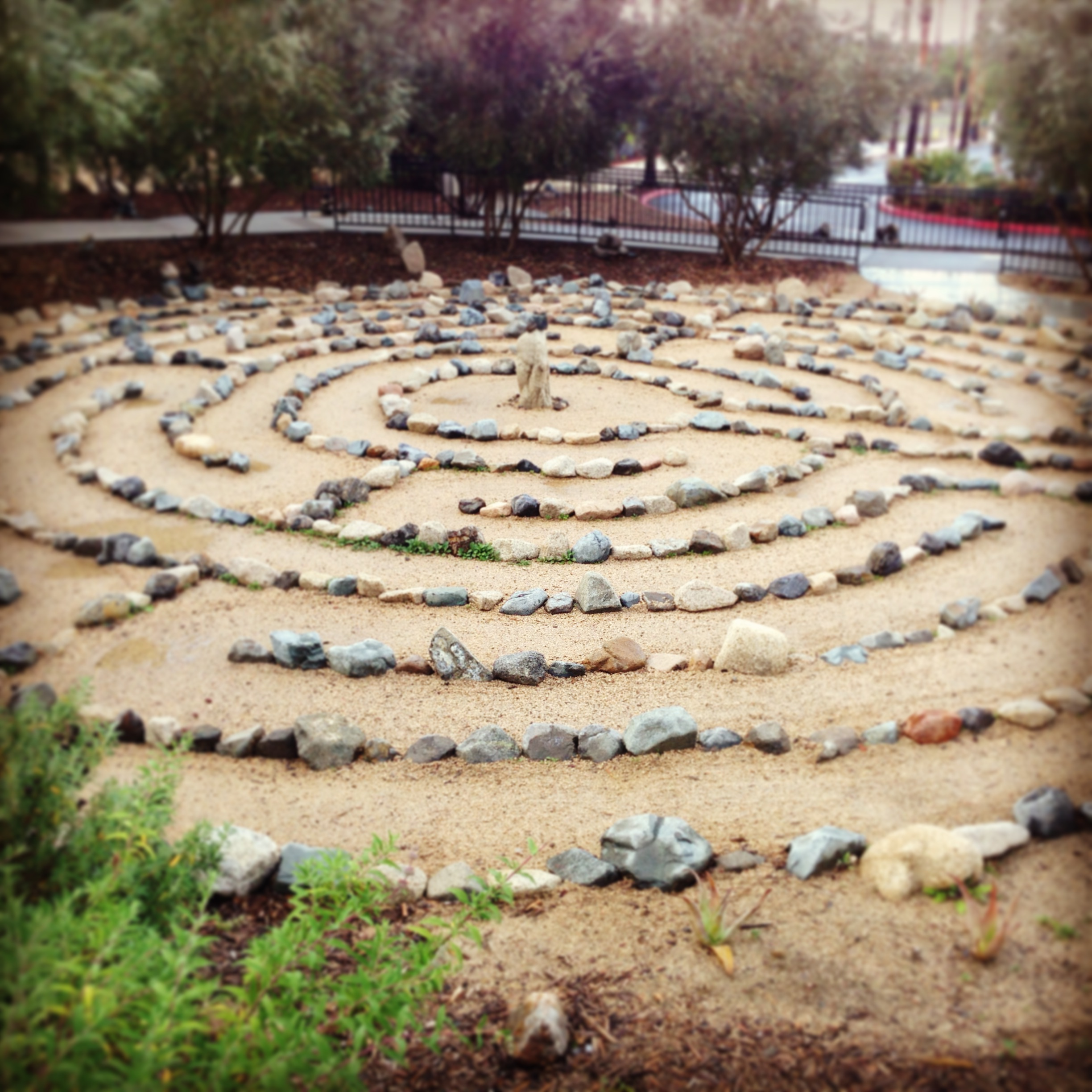 A Sustainable Practice, By Jessica Spotts